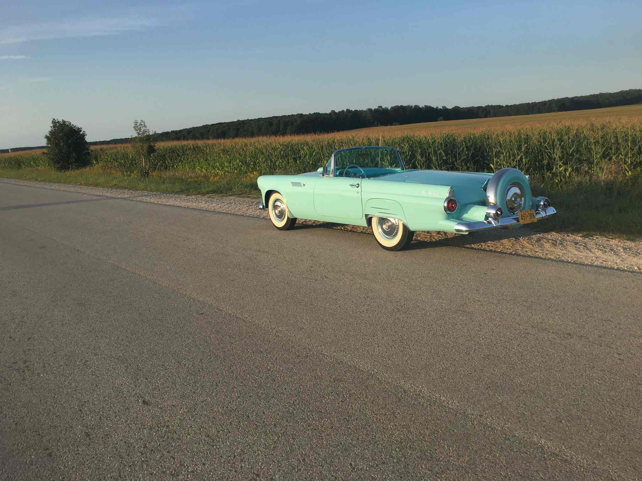1955 tbird